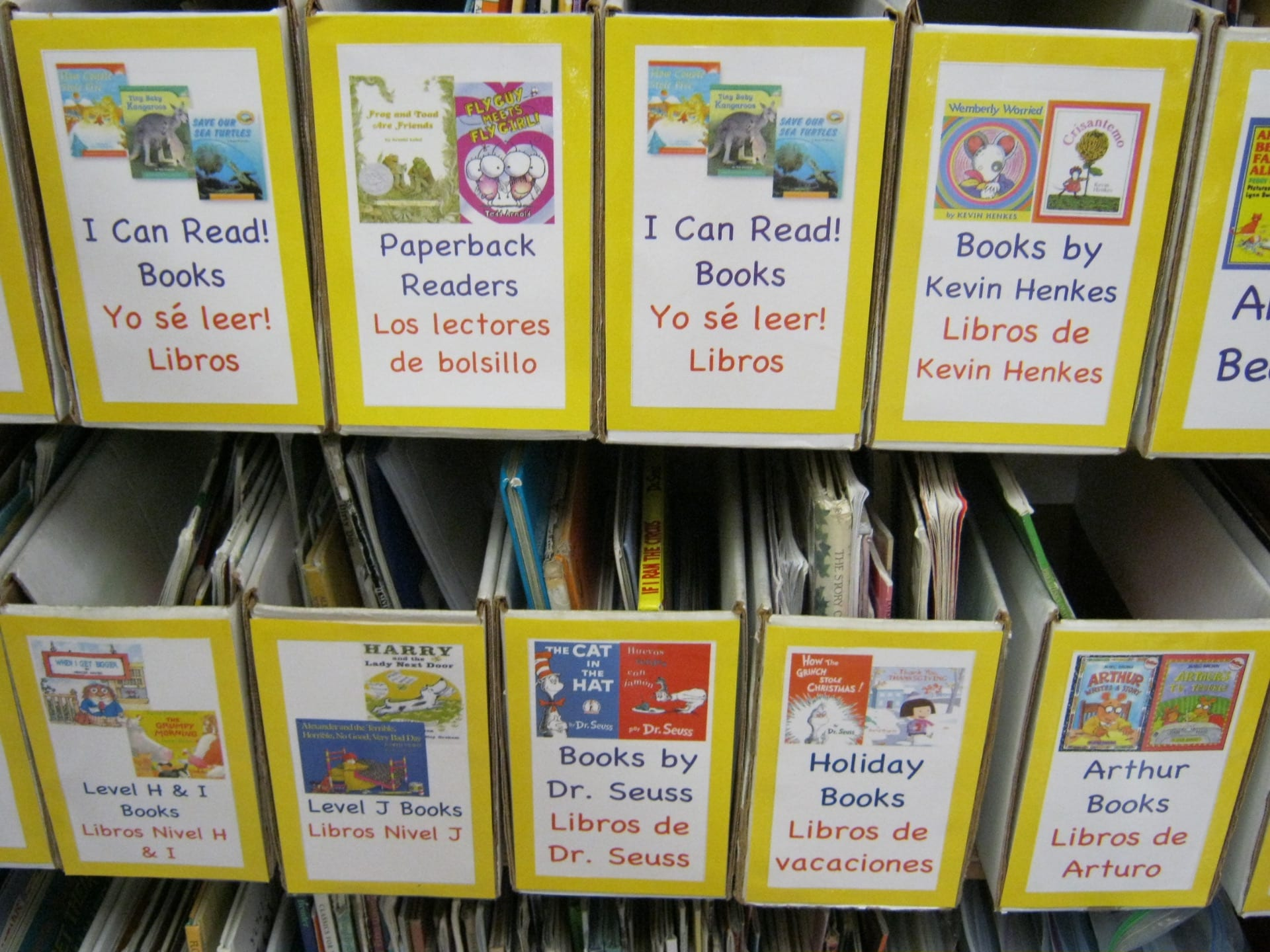 5 Thoughtful Ways to Create a Classroom Library